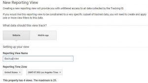 Google Analytics Backup View
